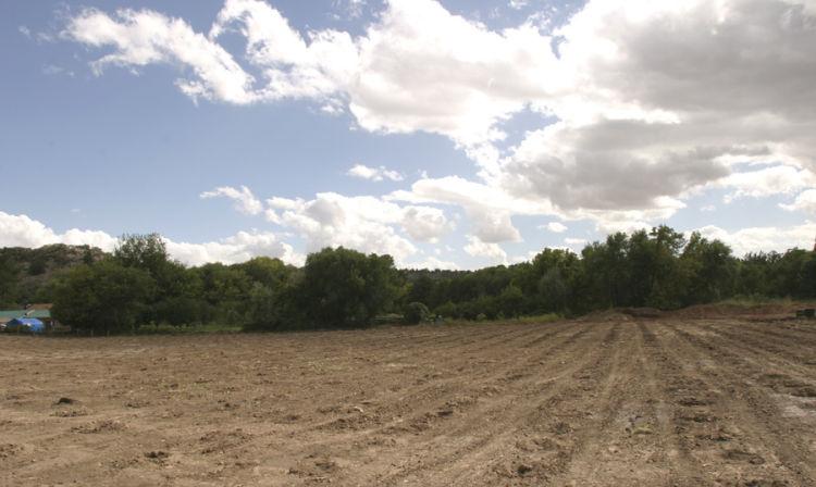 A close up of a dirt field