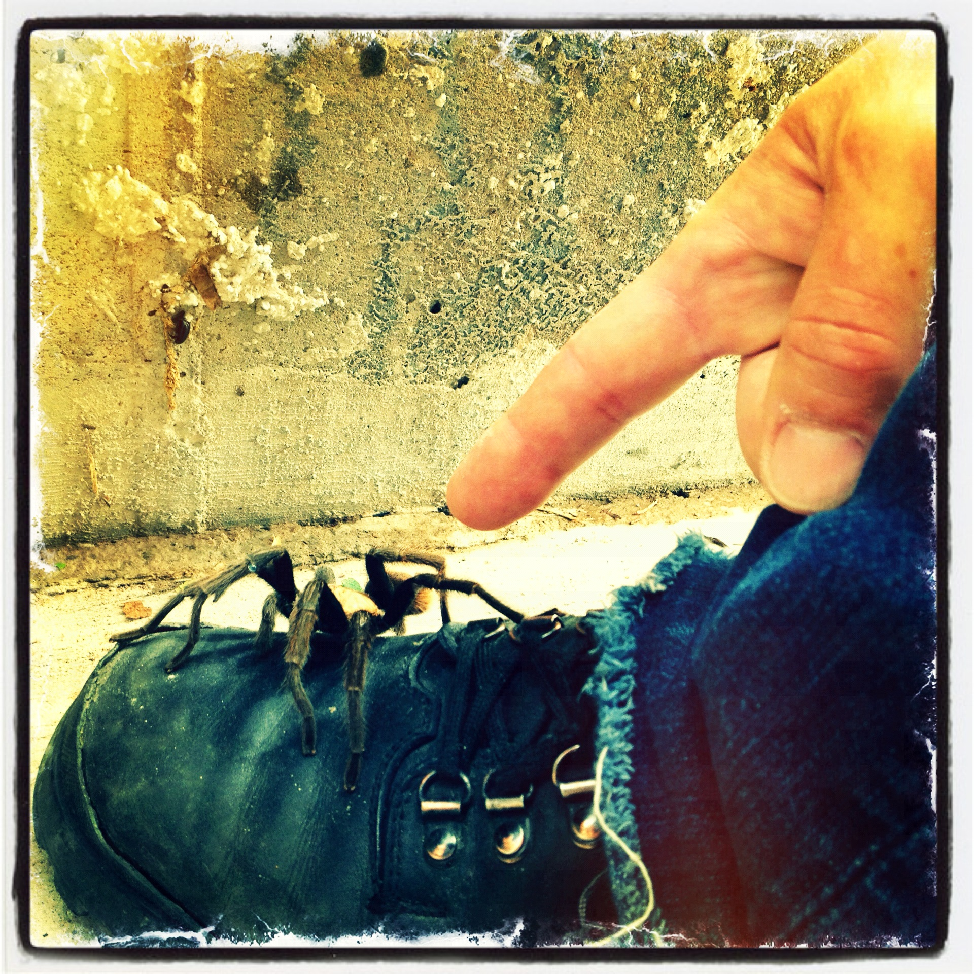 A hand holding a piece of luggage